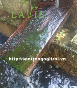 San Tre Ngoai Troi Co Kha Nang Chiu Nuoc Tuyet Voi 3 Oevo0bw3o4n1ozuuiu5ydbuinu247bkr0ngjmftisw 4