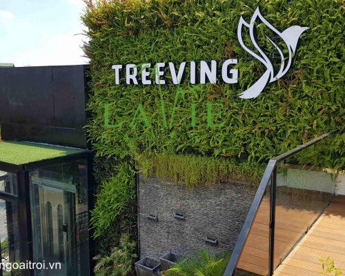 laviebamboo-thi-cong-san-tre-ngoai-troi-treeving-coffee-7