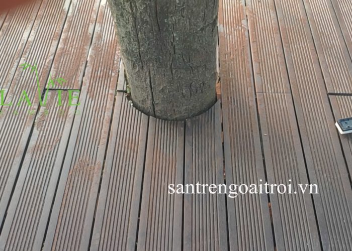 thi-cong-san-tre-ngoai-troi-quan-gio-tam-dao-lavie-bamboo-4
